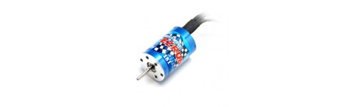 Motori brushless